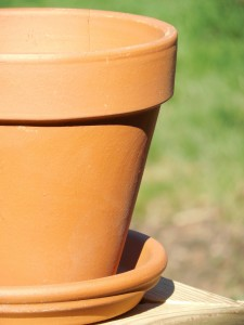 Think about putting a dish / tray under your plant pot.